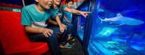 Lego® City: Deep Sea Adventure